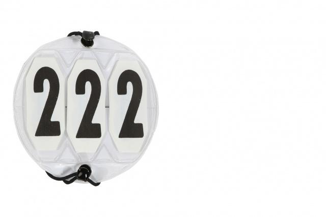 Stevnenummer til Hodelag