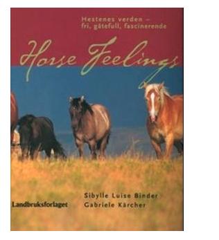 Horse feelings. TILBUD