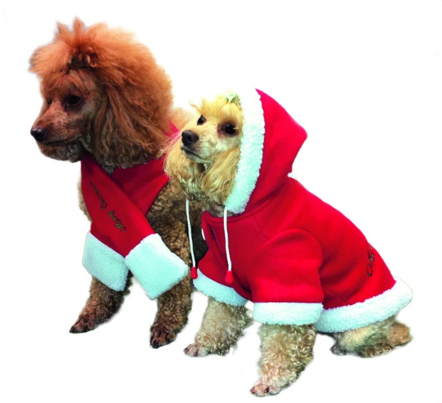 Jule Hundedekken
