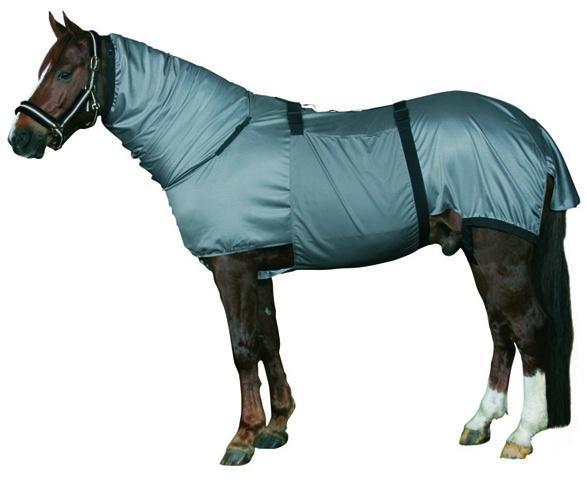 HorseGuard, Eksemdekken