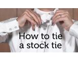 Jacson, Plastron/Stock Tie. Tilbud 3 stk