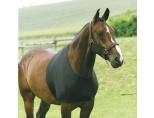 HorseGuard Bogbeskytter