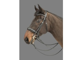 Donnerwetter multi bridle. MH.