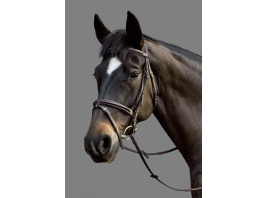 Top select bridle. MH.